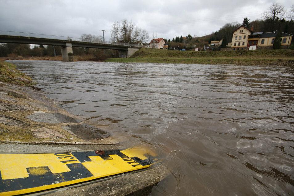 Ein Messpunkt der Freiberger Mulde in Niederstriegis: Der Pegel soll aufgrund der bevorstehenden Trockenheit demnächst sinken.