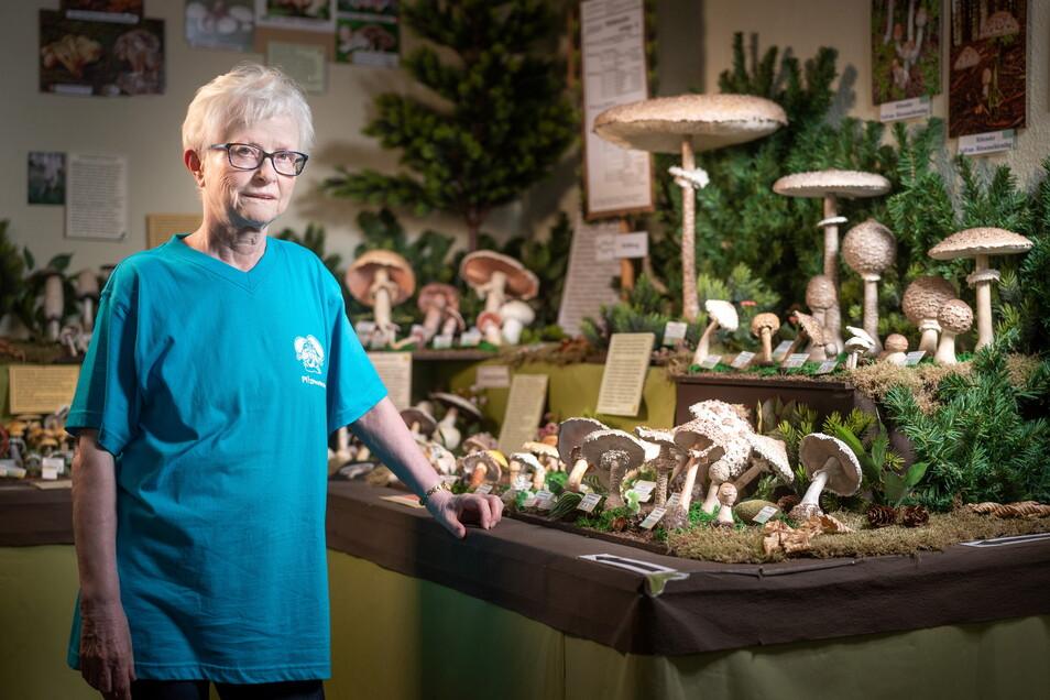 Heidemarie Preißler lädt wieder zu einem Besuch im Pilzmuseum Reinhardtsgrimma ein.