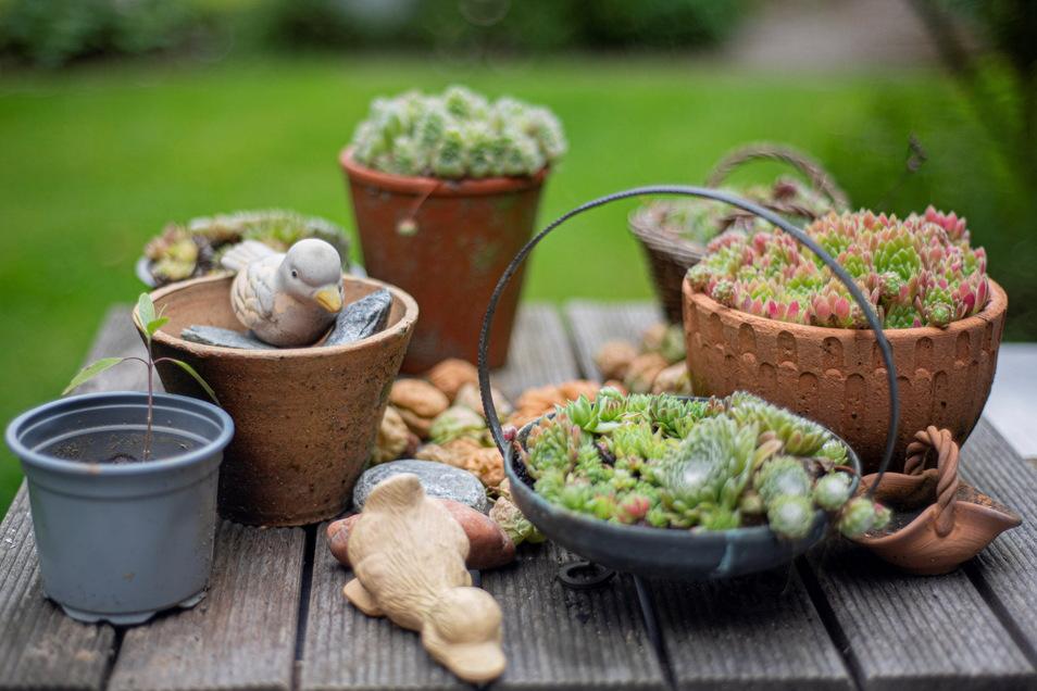 Liebevoll arrangierte Stillleben findet man überall im Garten.