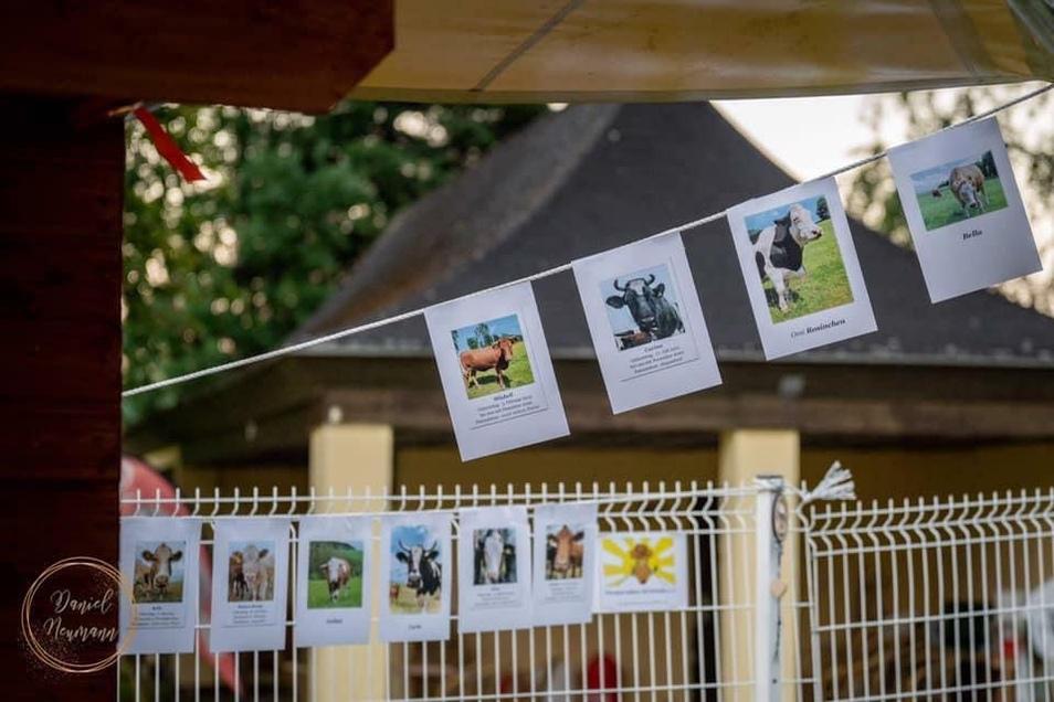 An Ständen informierten die Tierschutzorganisationen über ihre Arbeit.