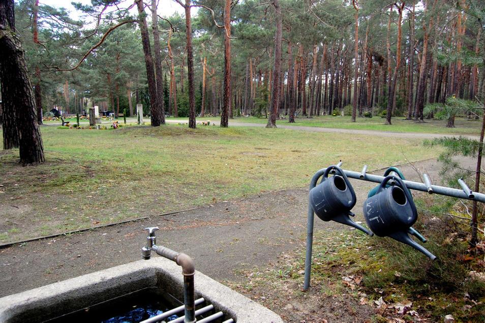 Auf dem Waldfriedhof in Kühnicht gibt es ausreichend Raum, um – durch einige Anpflanzungen separiert – eine bestimmte Fläche für Beerdigungen nach den Regeln des Islam anzubieten.