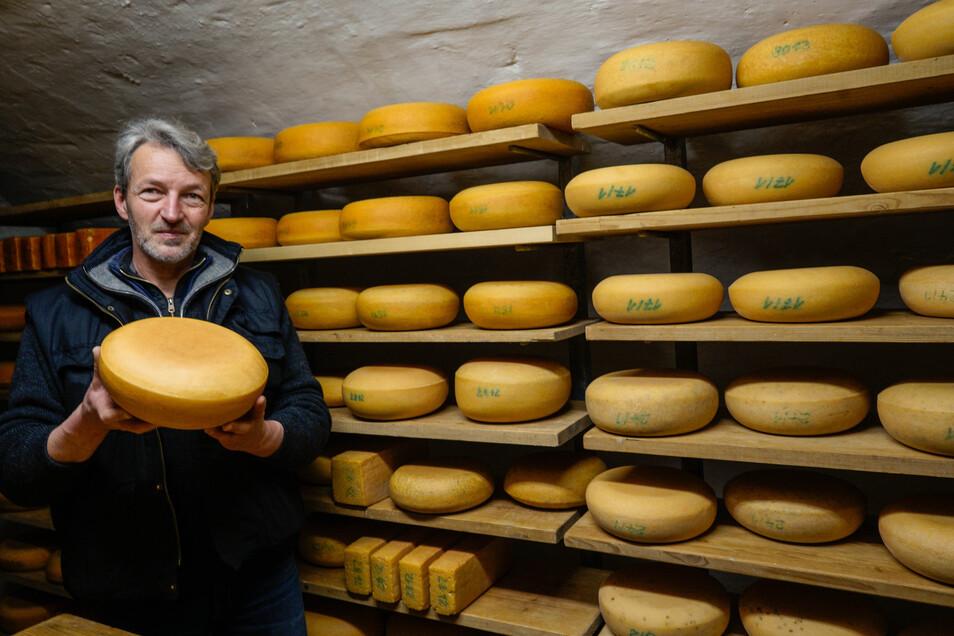 Noch lagern die goldgelben Käselaibe von Thomas Hieke im alten Pommritzer Rittergut. Bis Jahresende soll mit der neuen Käserei ein künstlicher Reiferaum entstehen.