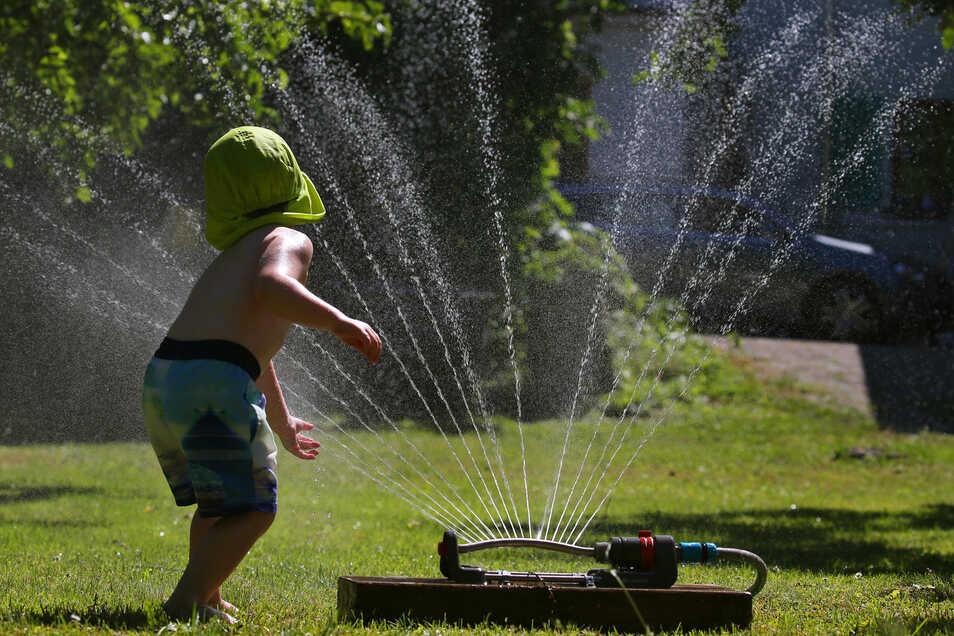 Rasensprenger verbrauchten bis zu 800 Liter Wasser in der Stunde.