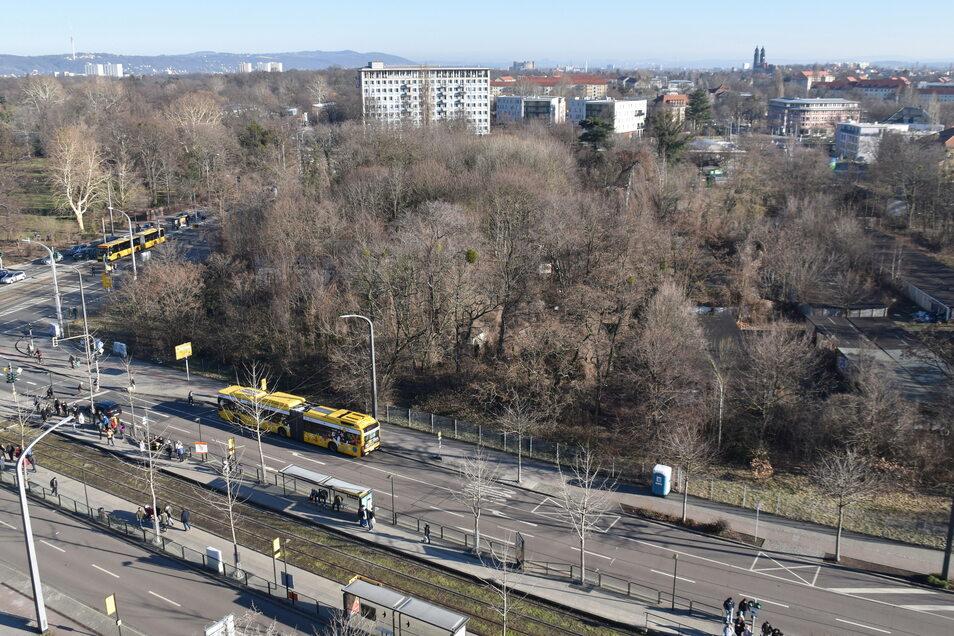 Jetzt gibt es für das Grundstück zwischen Lennéplatz, Lennéstraße und Gellertstraße konkrete Pläne.