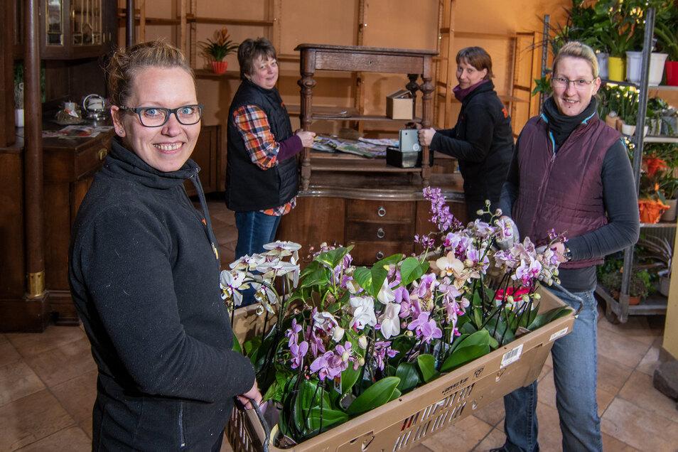 Das Waldheimer Blumengeschäft Blattlaus wird während der Corona-Zwangspause renoviert. Susi Williger (von links), Ute Münch, Michi Cyliax und Moni Münch packen zusammen, bevor der Maler kommt.