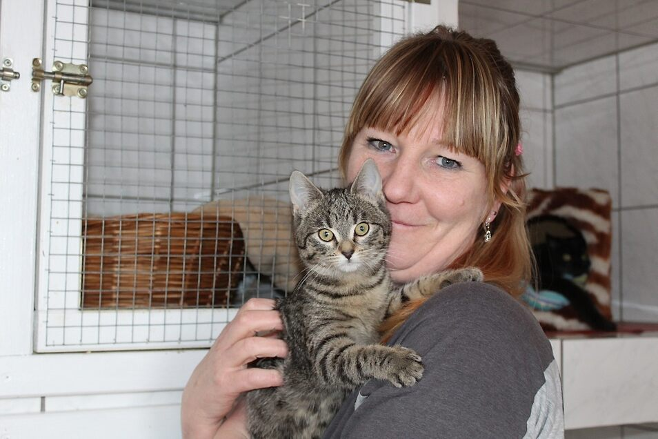 Schichtleiterin Simone Kühn mit einer der fünf Katzen, die vor ein paar Wochen in Ralbitz-Rosenthal ausgesetzt wurden.