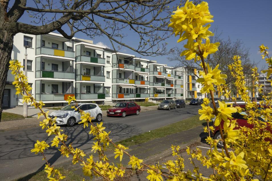 Im Karree Karl-Marx-Ring/Klötzerstraße wurden die meisten Blöcke der WGR schon verkleinert und modernisiert (Foto). Ab Mai soll mit dem Karl-Marx-Ring 18-24 der letzte Block folgen.