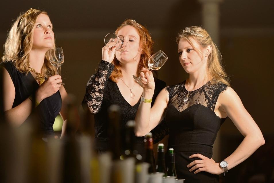 Haben sich bei der Kleiderordnung abgesprochen: Die sächsische Weinkönigin Lisa Leinemann (l.) sowie die Weinprinzessinnen Katrin Hecht (M.) und Ann-Kathrin Schatzl (r.) probieren Weißweine auf der gemeinsamen Jungweinprobe der Anbaugebiete Sachsen und Sa