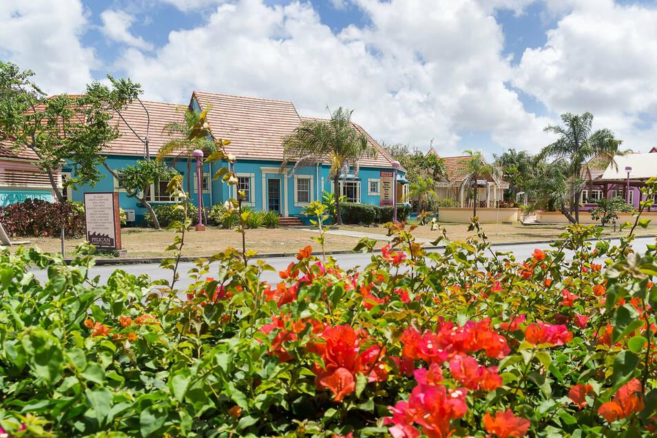 Barbados ist eines der Länder in der Karibik, die wieder bestimmte ausländische Touristen einreisen lassen.