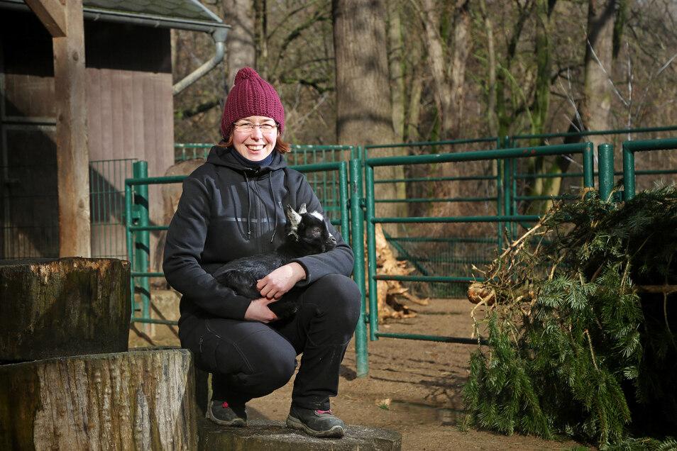Tierpark-Mitarbeiterin Melanie Bluhm zeigt den kleinen Ziegenbock aus dem Riesaer Tierpark. Was noch fehlt, ist ein Name für das Tier.