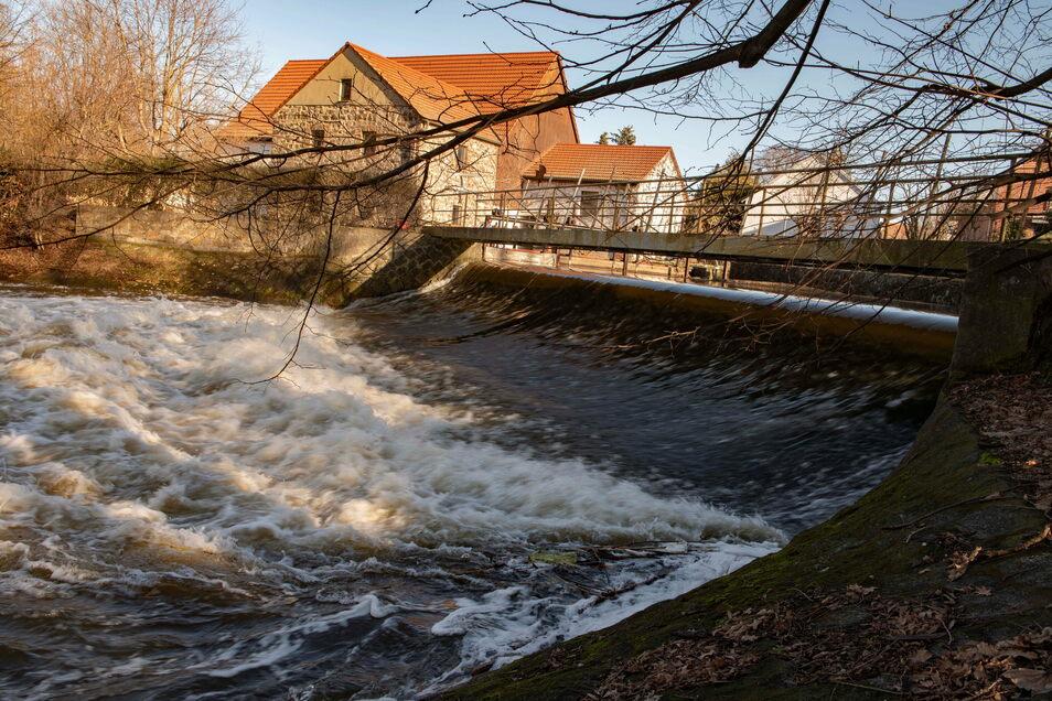 Das Wehr der Großen Röder in Cunnersdorf. Die Fluten tosen bedrohlich.