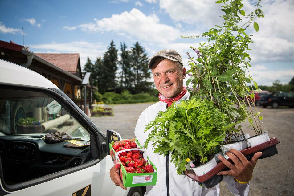 Erdbeeren aus Hosterwitz, Kräuter aus Mobschatz; Privatkoch Kai Kochan hat sein Auto mit regionalen Produkten für die Hochzeit vollgeladen.