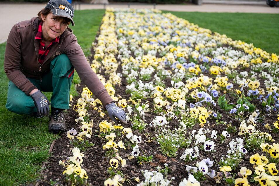 """Grünanlagenpflegerin Christiane Hänsel verfolgt die Botschaften des """"Lautsprechers"""" an vielen Tagen mit."""