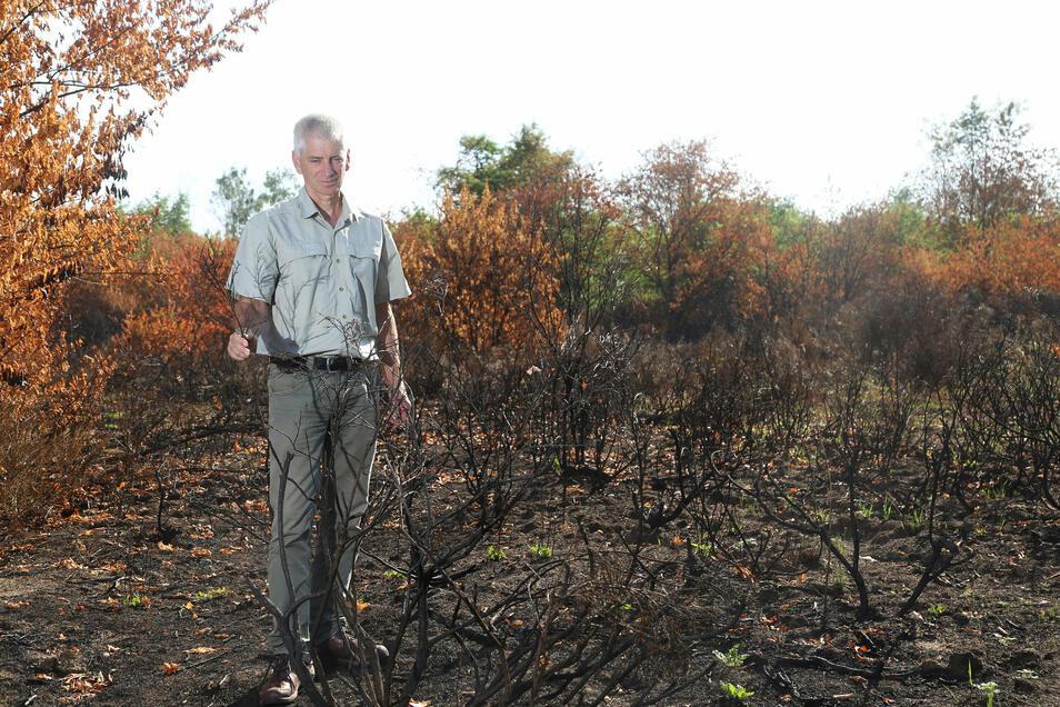 So sah es in der Gohrischheide 2019 aus, nachdem dort 25 Hektar bei einem Waldbrand abgebrannt waren. Mittlerweile hat sich das Gebiet erholt. Förster Kaj Krumbiegel von Sachsenforst warnt vor Zigarettenkippen.