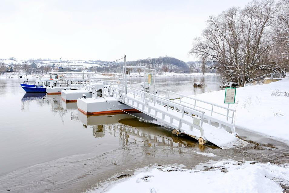 Der Fährbetrieb in Coswig musste witterungsbedingt kurzzeitig eingestellt werden. Seit Montagmorgen setzt die Fähre wieder über.