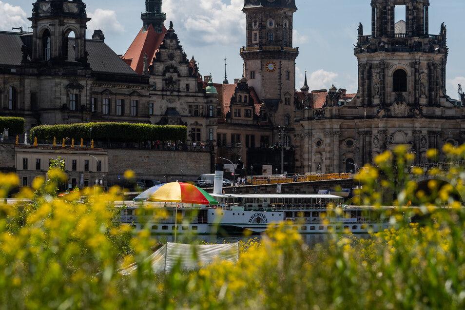 In Dresden würden zu viele Wohnungen als Ferienwohnungen genutzt. Dagegen gibt es Protest.