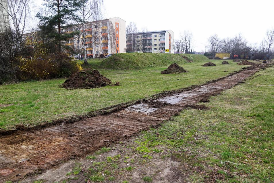 Hier entsteht was Neues: das Areal des künftigen Eigenheimstandorts an der Segouer Straße in Weida.