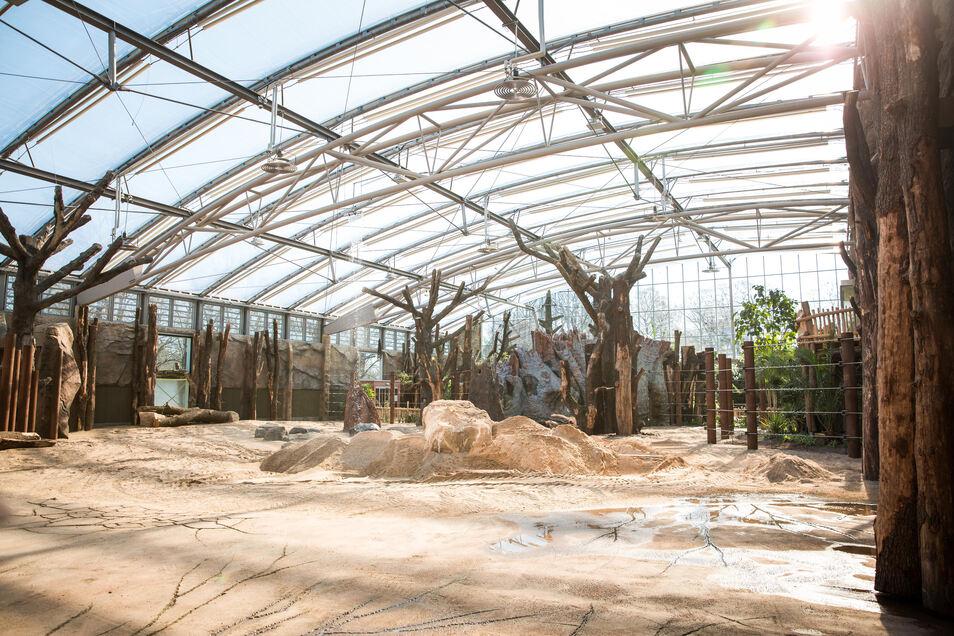 Im Dresdner Zoo ist nur das neue Afrikahaus mit einer Brandmeldeanlage ausgestattet.