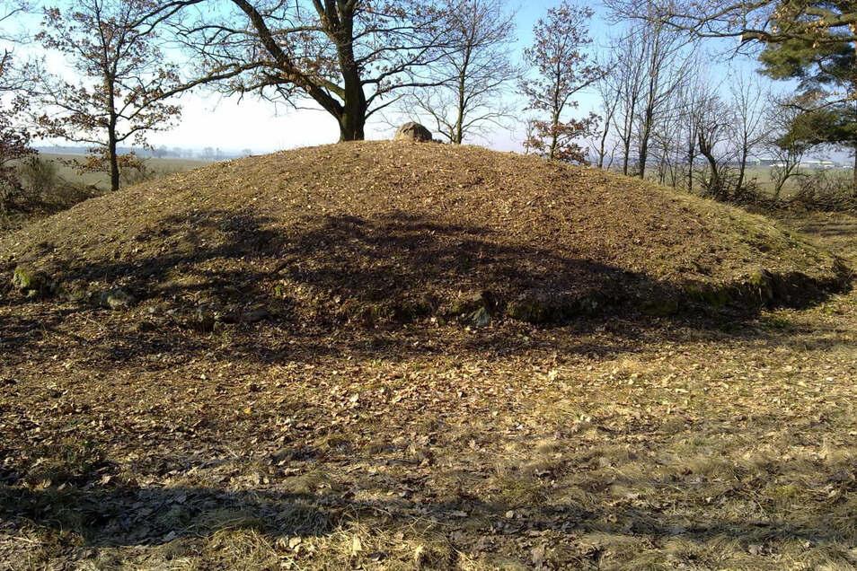 So frei geschnitten sah man das Hügelgrab zuletzt 2011.