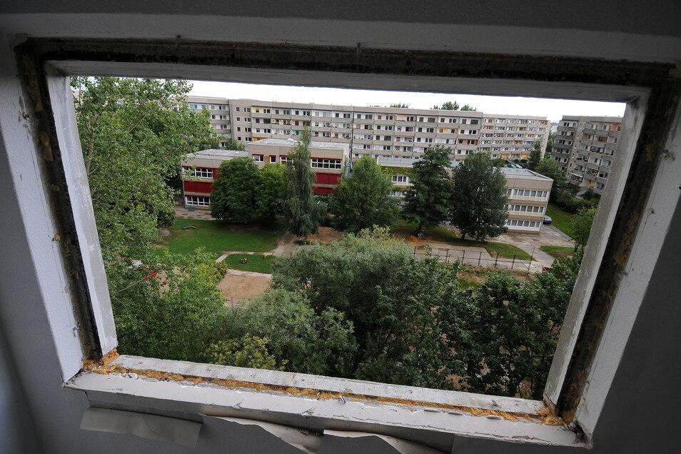 Blick ins Grüne - 2009 entstanden aus dem Fenster eines Abrissblocks im Peter-Liebig-Hof.