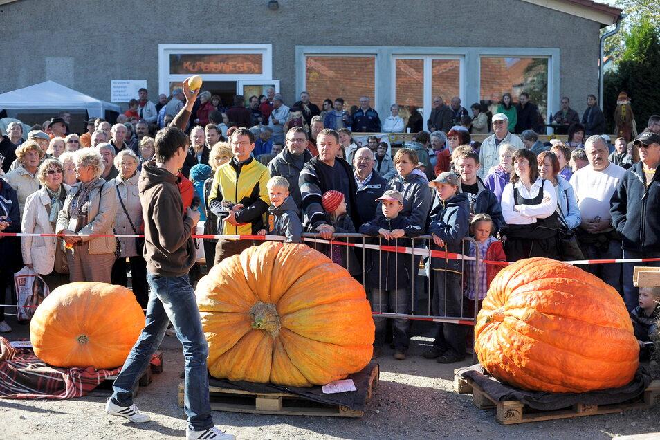 Das Kürbisfest in Ludwigsdorf entwickelte sich, außer in der Corona-Zeit, zum Volksfest.