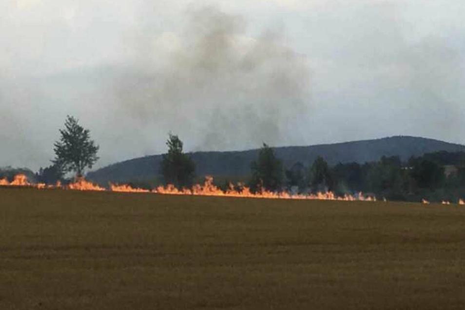 Auf breiter Front brannte am Montagabend ein Stoppelfeld zwischen Dippoldiswalde und Oberhäslich.