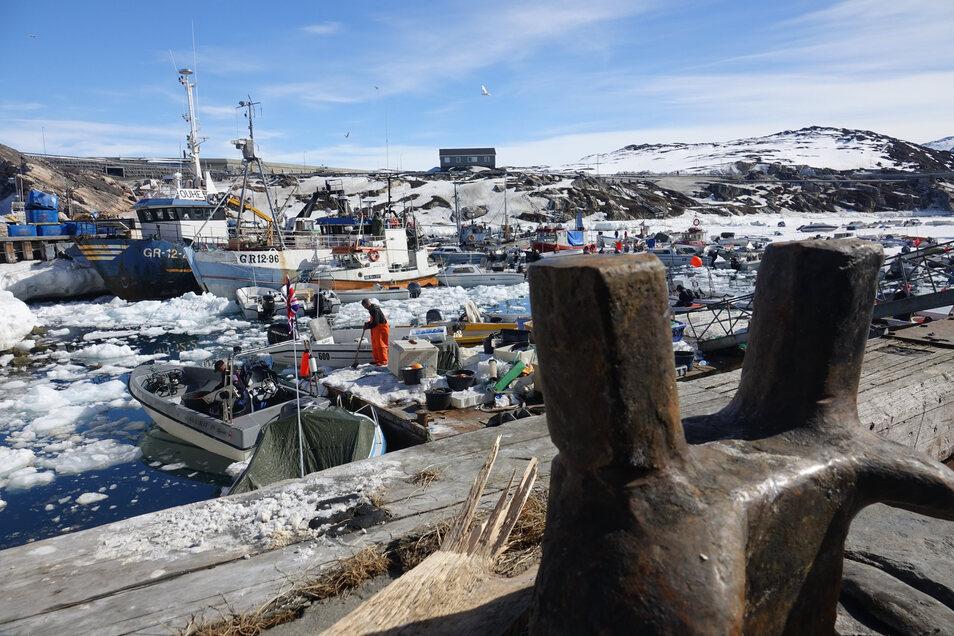 Der Hafen Ilulissat.