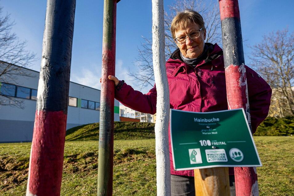 Verbogene Schilder, gekappte Halteseile: Susanne Brand vom Umweltzentrum ärgert sich über Vandalismus an neu gepflanzten Bäumen.