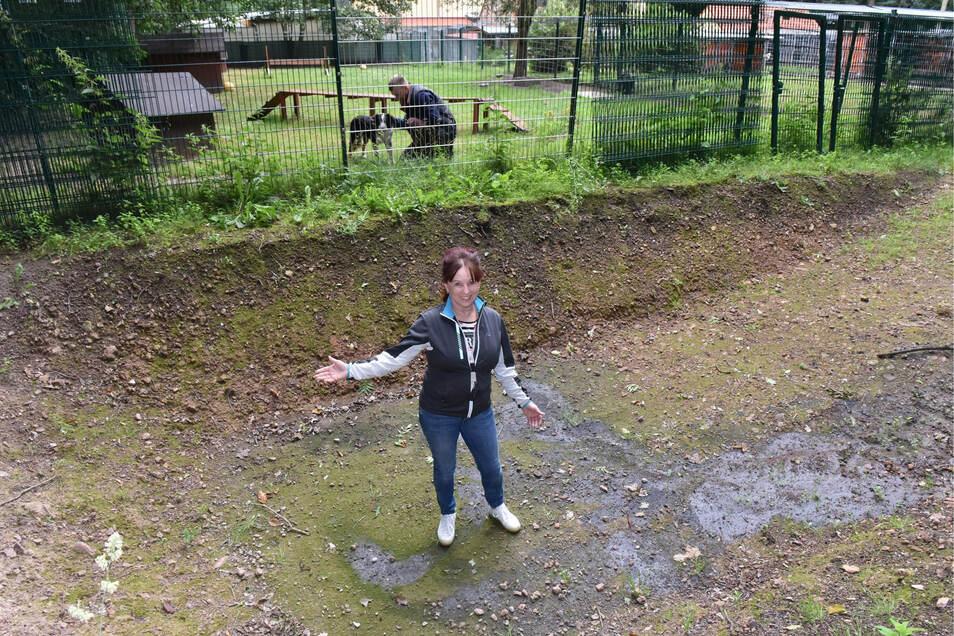 Die Freitaler Tierheim- Chefin Regina Barthal-Marr im bereits ausgegrabenen Becken des neuen Hunde-Badeteiches.