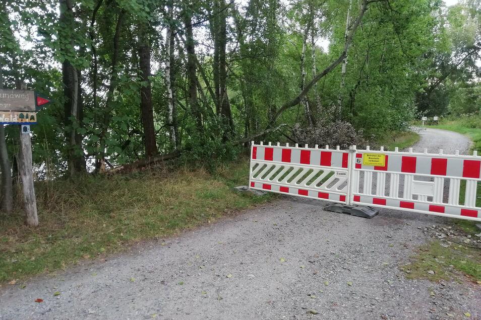 Am Montagnachmittag wurden Sperrzäune an verschiedenen Stellen in den Teichen bei Niedergurig aufgestellt. Sie machen den Spreeradweg auf reichlich zwei Kilometern Länge unpassierbar.