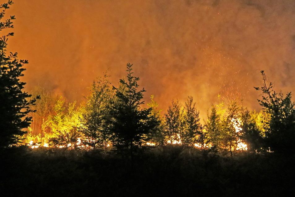 In Russland brennt der Wald - doch um das Ausmaß wird gestritten.