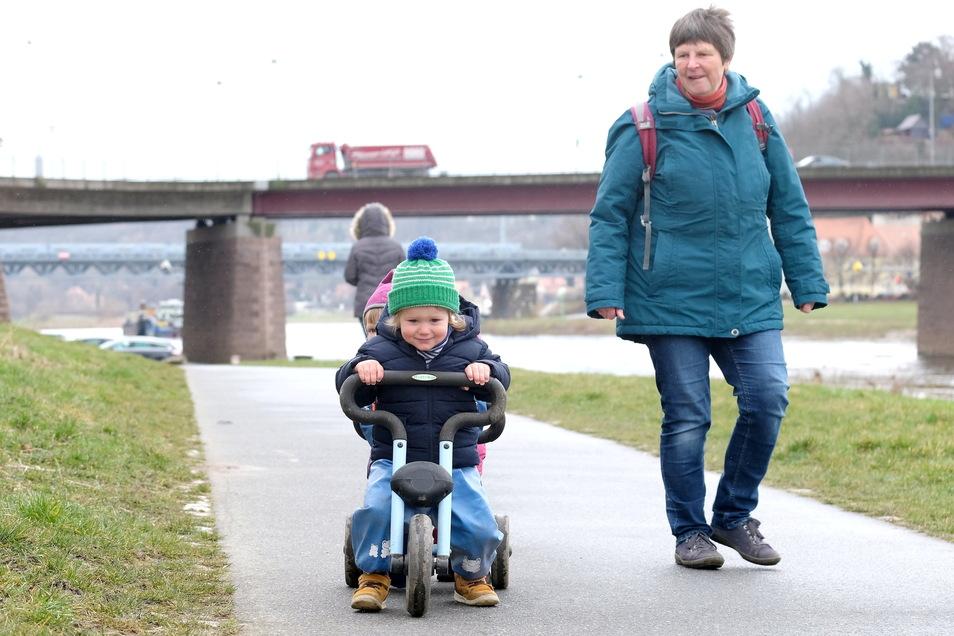 Tagesmutti Regina Philipp beim täglichen Spaziergang an der Elbe, hier mit Fietje und Frida.
