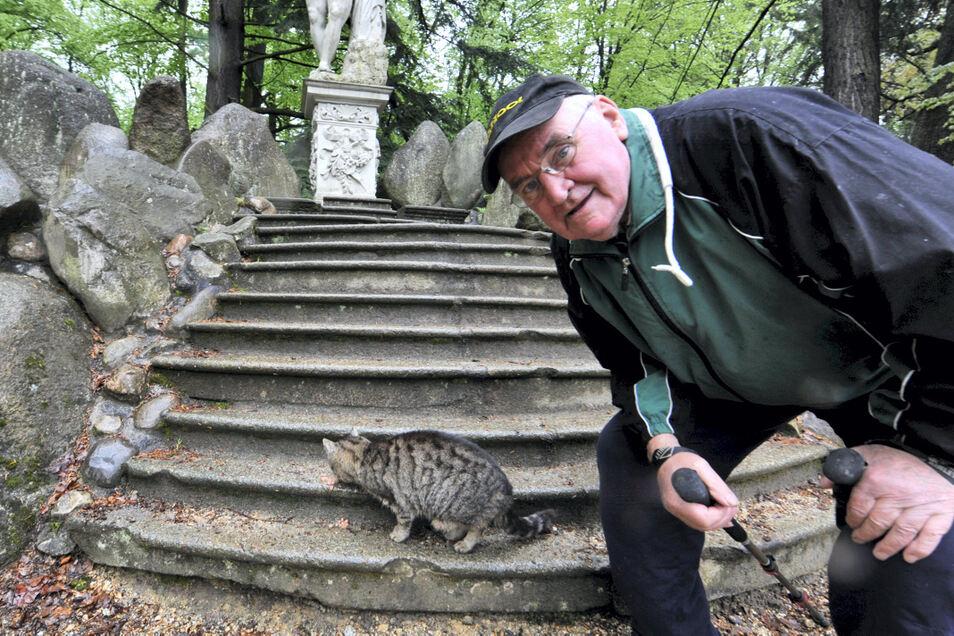 """Die einst streunende Hauskatze reagiert inzwischen auf """"Miez, Miez"""" und lässt sich jeden Morgen zu Füßen der Herkulesfigur am Rakotzsee füttern. Aus Dankbarkeit patrouilliert die Katze durchs historische Bau-Ensemble und fängt Mäuse."""