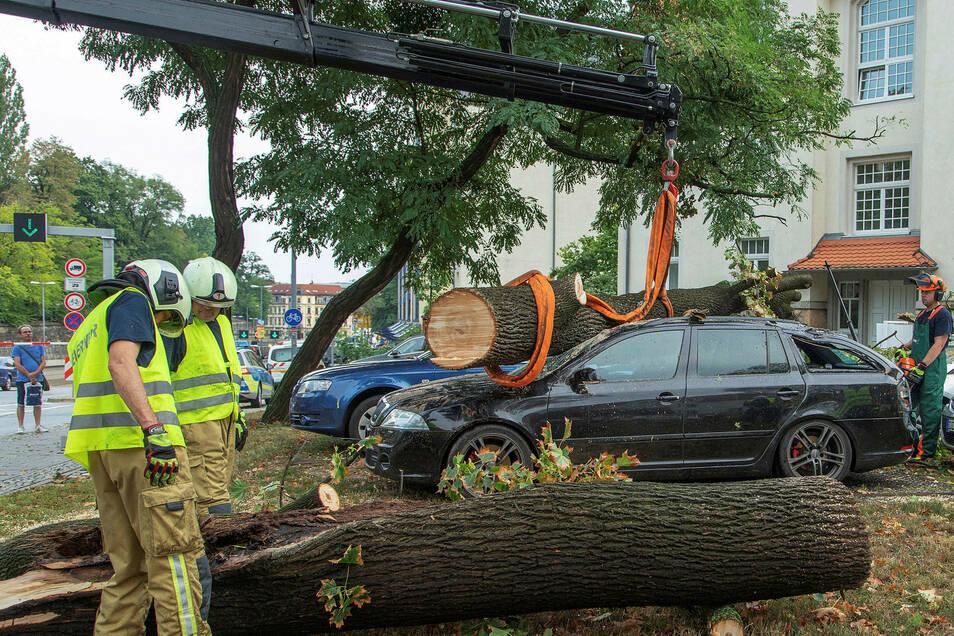 Nach einem heftigen Gewitter heben Feuermännern einen umgestürzten Baum von einem stark beschädigten Auto auf der Stauffenbergallee.