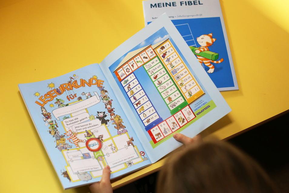 Fibeln zum Erlernen des Lesens und Schulbücher für die Klassenstufen 1 bis 12 werden für das neue Schuljahr an die Schulen der Stadt geliefert.