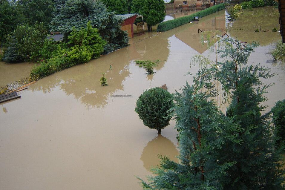 Blick aus dem Badfenster zur Einfahrt auf das Grundstück. Viele Pflanzen haben das Hochwasser nicht überlebt. Die Hecke rechts im Hintergrund auch nicht.