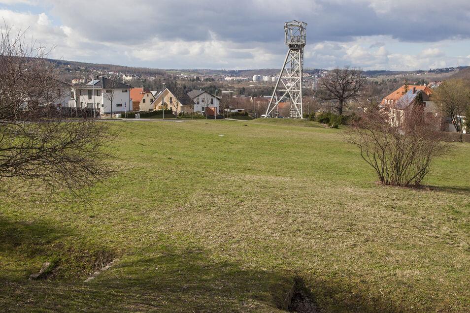 Diese Wiese soll weg: Die Stadt möchte nahe dem Schloss Burgk einen Parkplatz anlegen.