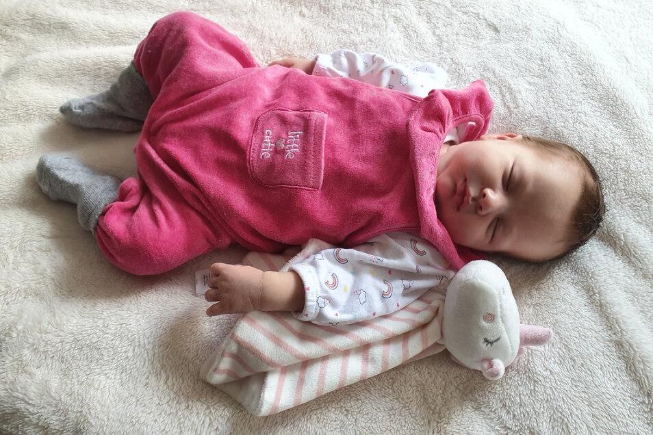Lara, geboren am 5. Mai, Geburtsort: Kamenz, Größe: 51 Zentimeter, Gewicht: 3.520 Gramm, Eltern: Sabrina Heinze und Philipp Schäfer, Wohnort: Neustadt in Sachsen