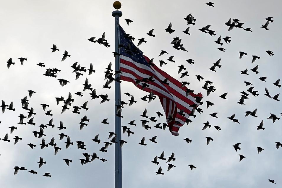 Die USA haben für dieses Wochenende Gespräche mit den Taliban in Katar angekündigt.