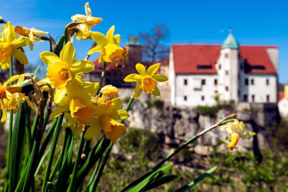 Obwohl es um Burg Hohnstein ruhig ist, hinter den Kulissen wird weiter an der Zukunft des historischen Ensembles gearbeitet.