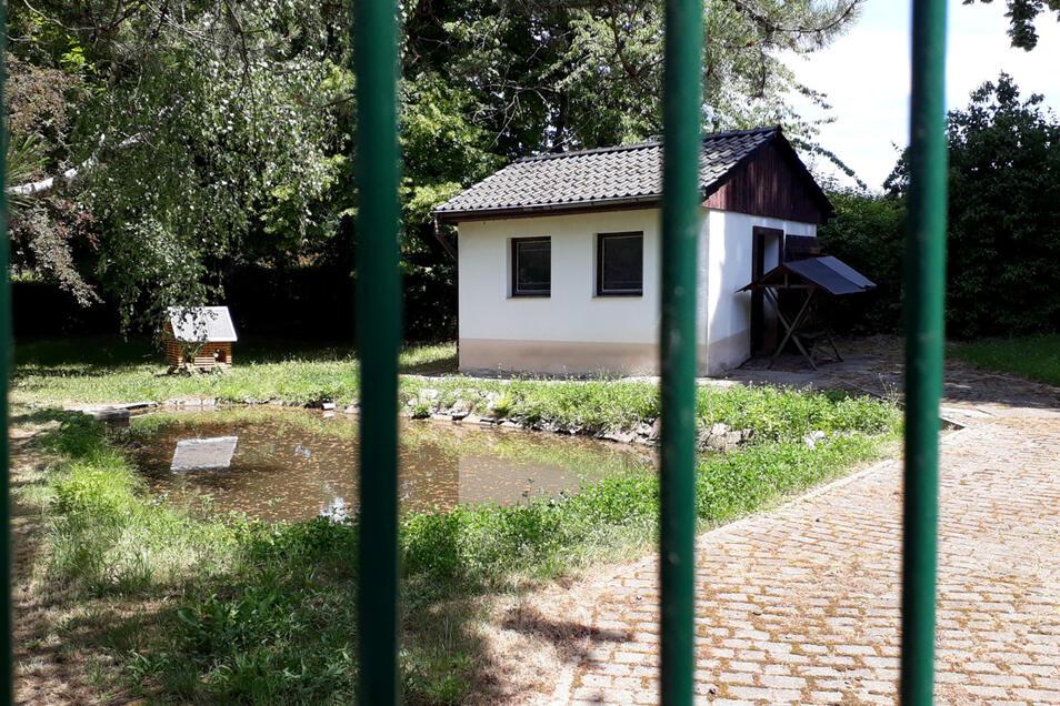Verwaist ist das Gehege im Bürgergarten, in dem bis vor einigen Jahren noch eine kleine Herde Kamerunschafe gehalten wurde. Einige Stadträte wollen es wiederbeleben.