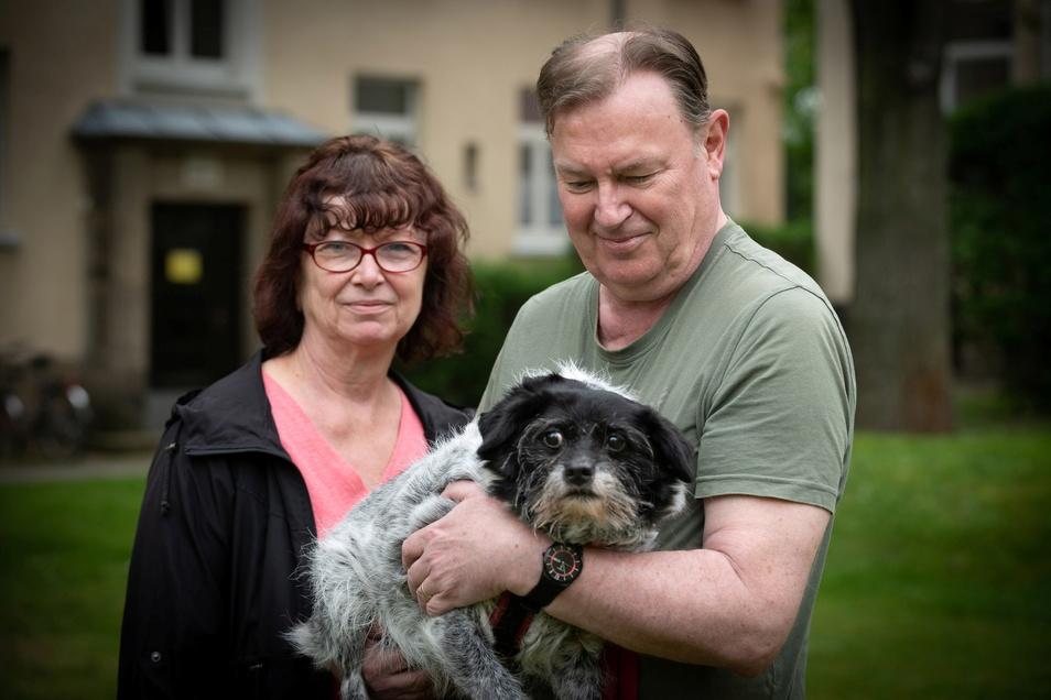 Kerstin und Gert Schadt adoptierten einen rumänischen Straßenhund - mit all seinen Eigenheiten.
