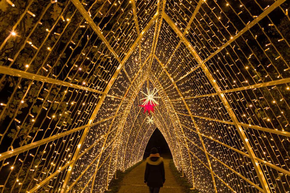 Ein Lichterketten-Pavillon verzaubert die Dunkelheit.