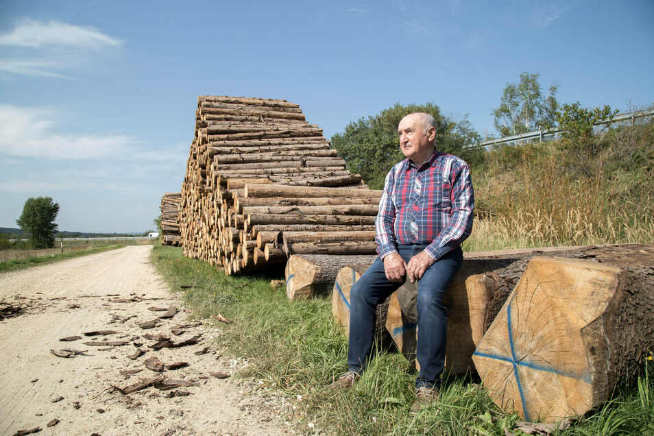 Der Kodersdorfer Martin Schimanz hat derzeit Mühe, das Holz aus seinen Wäldern an den Mann zu bringen. Wenn das doch klappt, dann nur zu Niedrigpreisen.