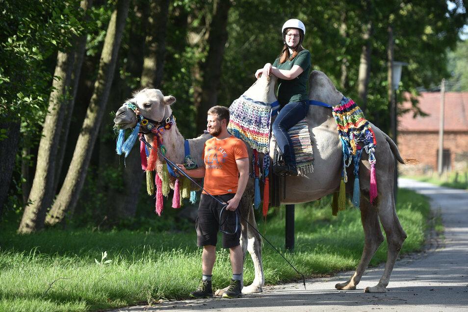 Kamelführer Tobias Kühn und Elisa Duschek als Reiterin sind schon ein geübtes Team. Die junge Frau beginnt bald mit ihrem Freiwilligen Ökologischen Jahr auf dem Lindengut.