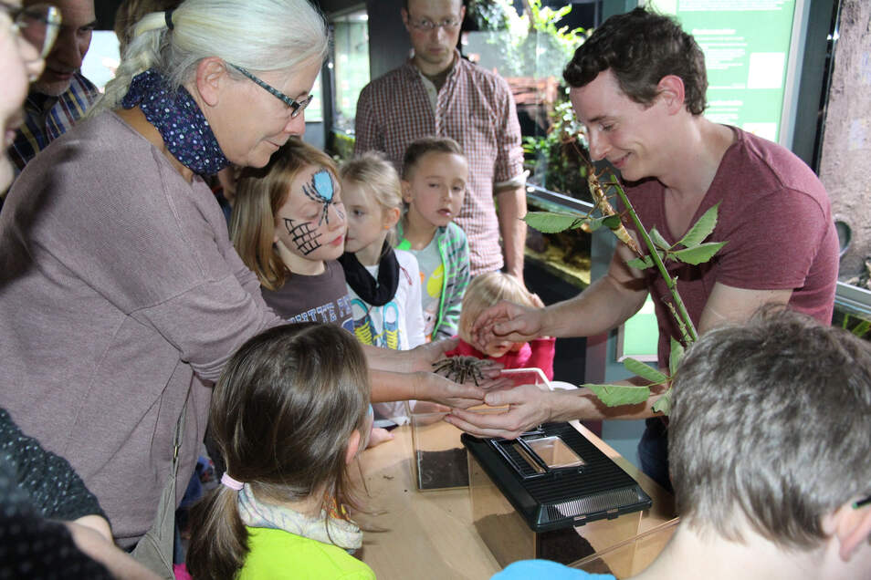 So wie hier bei einem der traditionellen Familienfeste im Görlitzer Naturkundemuseum sind alle Besucher herzlich willkommen. Ermäßigungen für Eintrittskarten gibt es nach der Gebührenordnung.