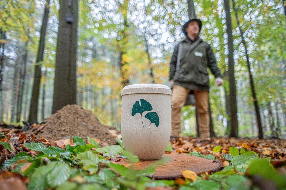 Seit dem vorigen Herbst hat Kamenz einen Bestattungswald. Am Sonnabend sind mit Anmeldung Führungen möglich.