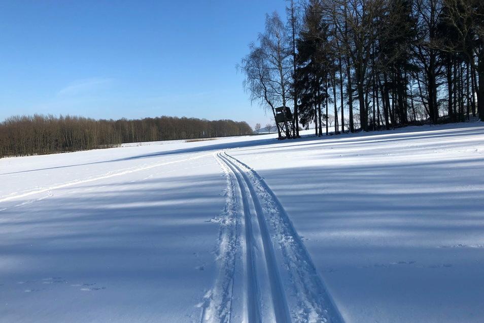 So sonniges Winterwetter ist für Sonntag wieder angekündigt.