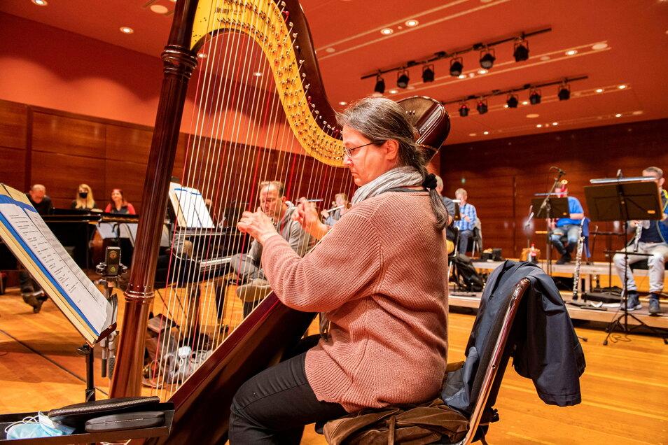 Solo-Harfenistin Claudia Benkert im kleinen Saal des Kulturschlosses.