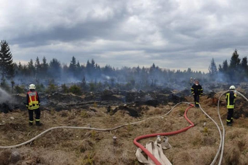 Feuerwehrleute aus Altenberg und den tschechischen Nachbarkommunen löschten gemeinsam den Brand.